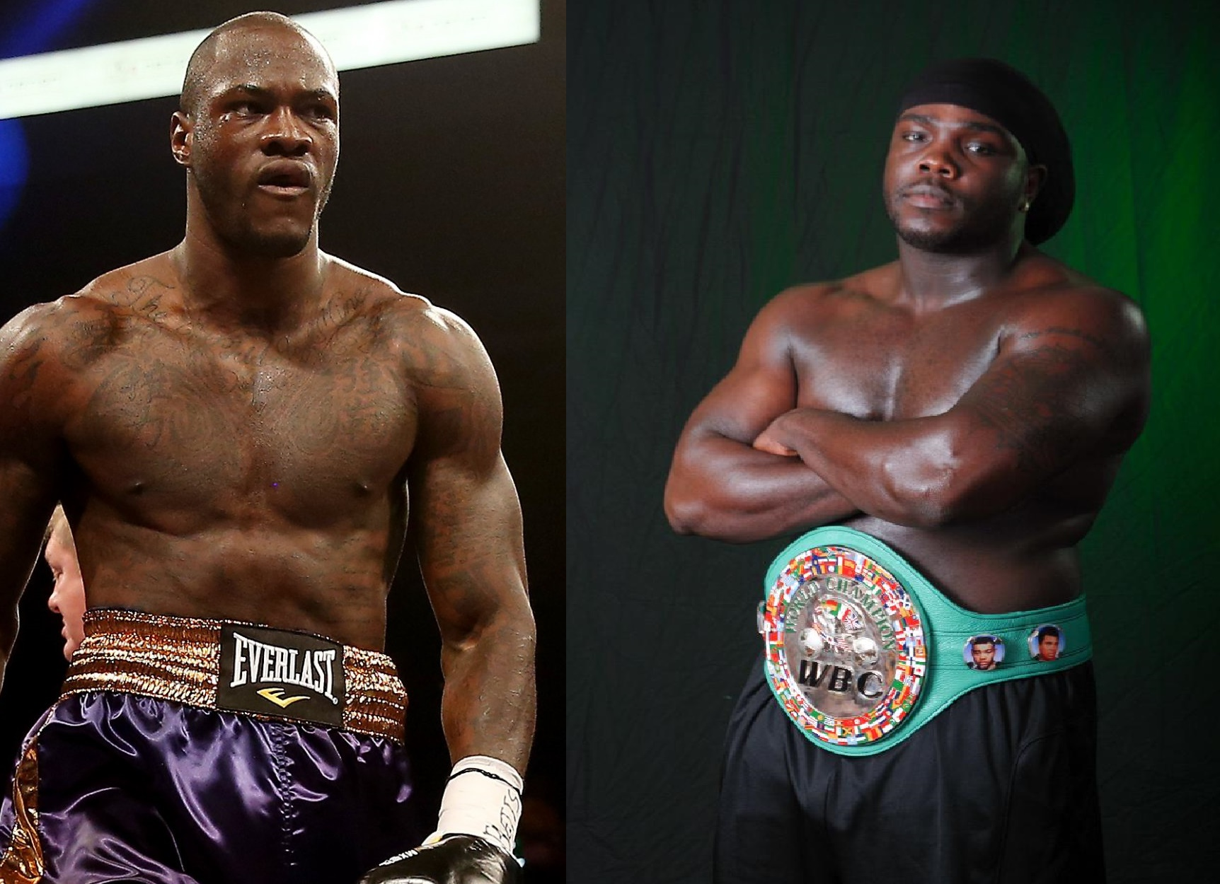 Bermane Stiverne vs. Deontay Wilder