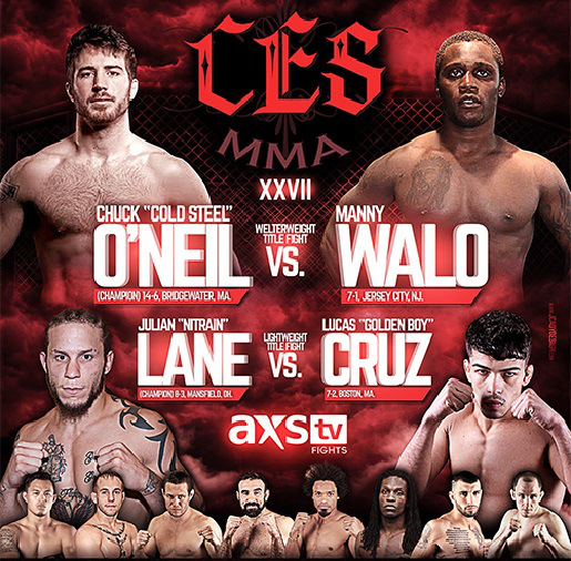 ces-mma-29-poster-12-06-15-combates